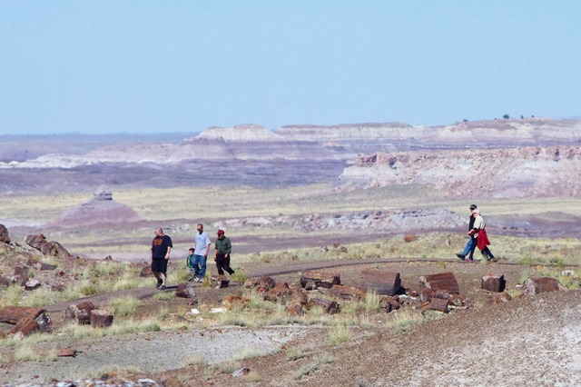 Petrified Forest National Park, Arizon, October 9, 2011 -2