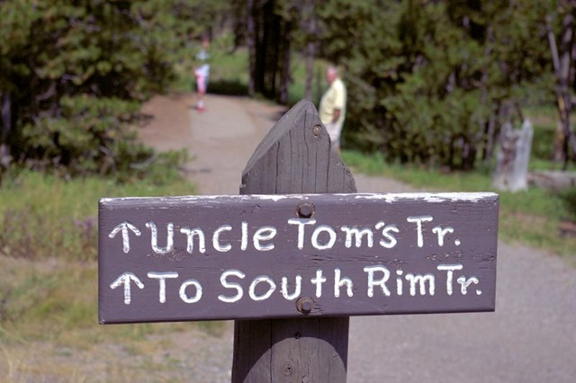 Uncle Tom's Trail to Lower Falls of the Yellowstone, Grand Canyon of the Yellowstone, Yellowstone National Park, Wyoming, August 17, 3014