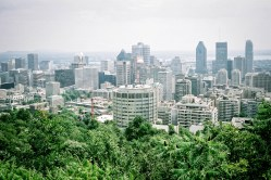 Downtown Montreal, from Mont-Royal