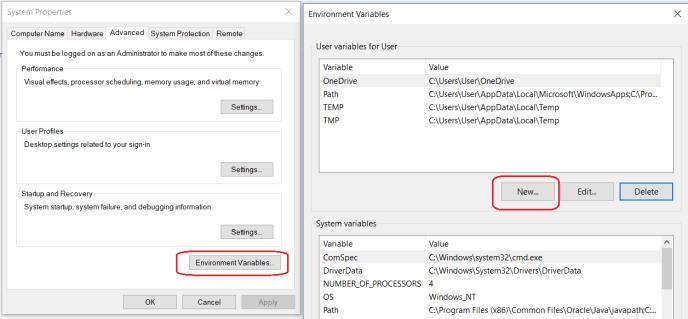 Set Windows Environment Variables