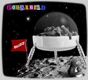 Polarbird - Buzz EP
