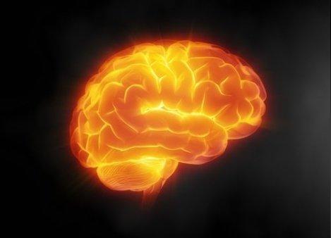 cuidar-del-cerebro-500x360