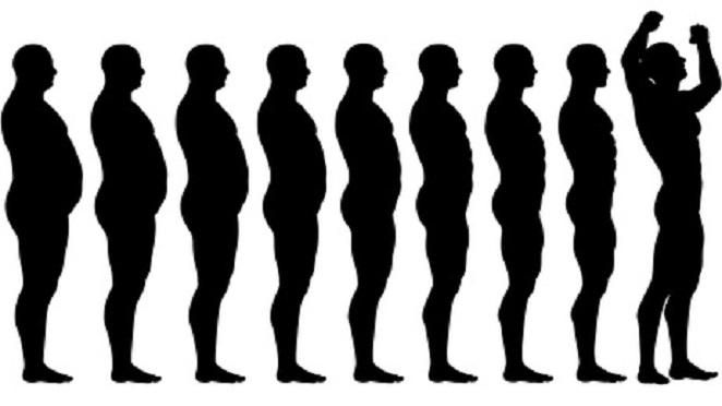 Evolución..