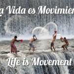 Movimiento..Vida  Inactividad…Muerte