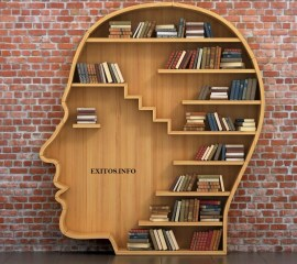 Копия-estanteria-forma-cabeza-libros-interior