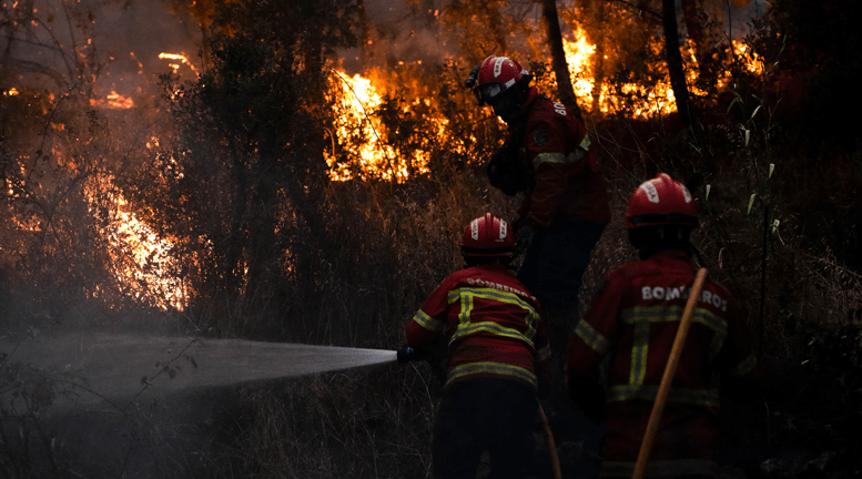 VIDEO | Portugal: Bomberos batallan contra devastador incendio