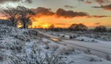 402 Mike Watson Sunrise on East Anstey Common