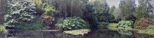 RHS Rosemoor lake