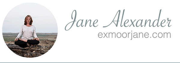 About Jane Alexander | writer, author & journalist