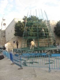 08. construction of the Christmas tree