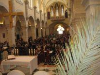 01. Palm Sunday