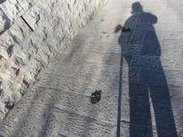 04-sidewalk
