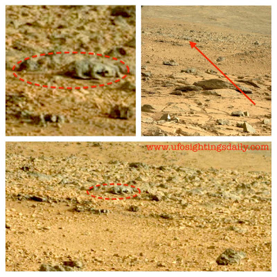 Curiosity photo showing lizard on Mars. Click image for original NASA photo. Credit: UFOsightingsdaily.com