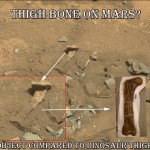 NASA Source Image of thigh bone