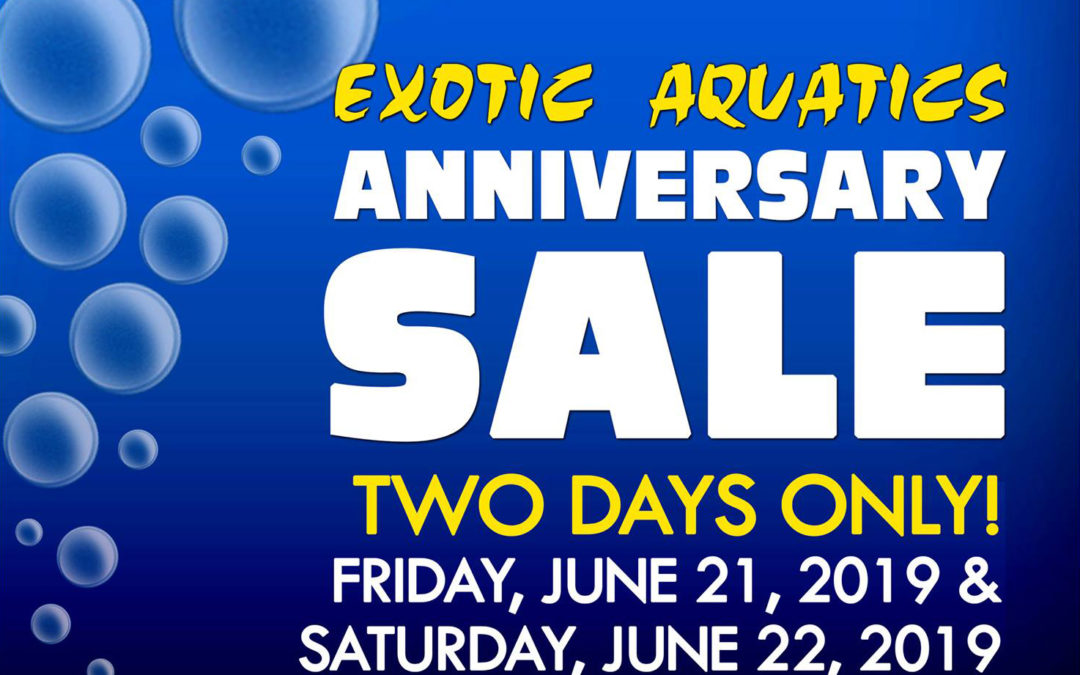 Anniversary Sale Announcement