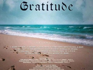 Gratitude Timaya Album Official Artwork