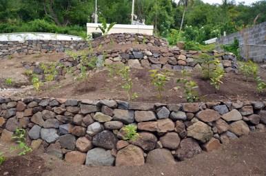 Dry_Stone_Walls_GRW_0350