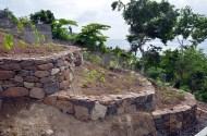 Dry_Stone_Walls_GRW_0390