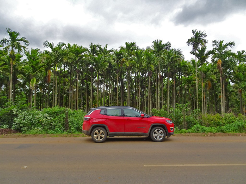 Jeep Compass whizzing past palm trees in Karnataka