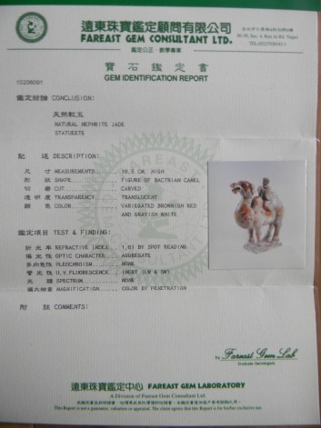 DSCN0528