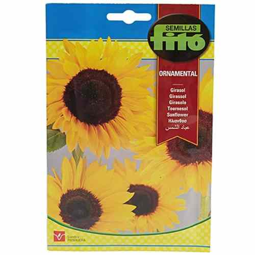 Fito Sunflower Seeds