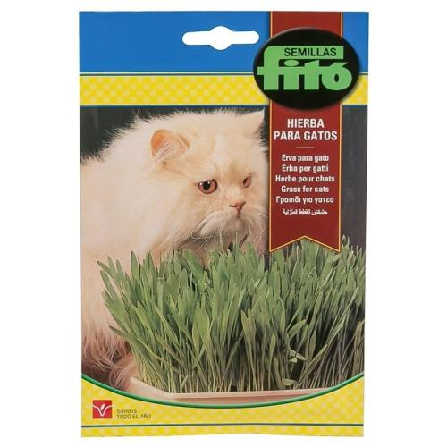 Optimized-Fito-Grass-for-Cat-Seed[1]