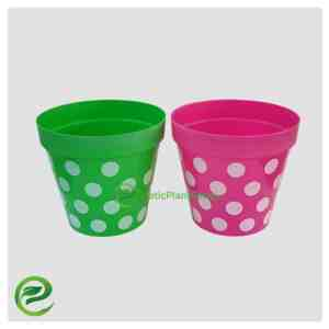 Plastic Pot Green And Purple - exoticplantsouq.ae