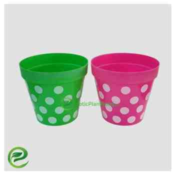 Plastic Pot Green And Purple - exoticplantsouq.ae