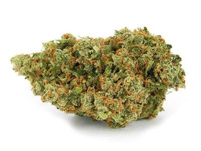 jack herer cannabis strain