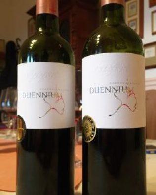 Vylyan Duennium villány wine