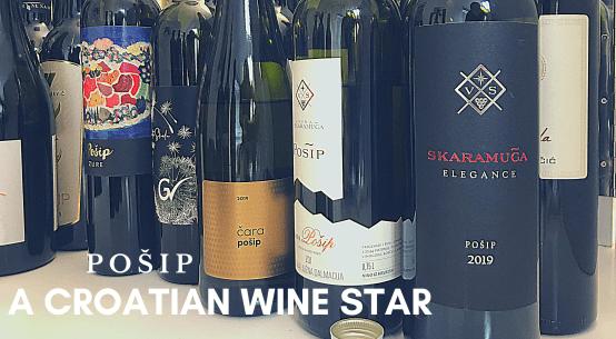 Croatian wine posip