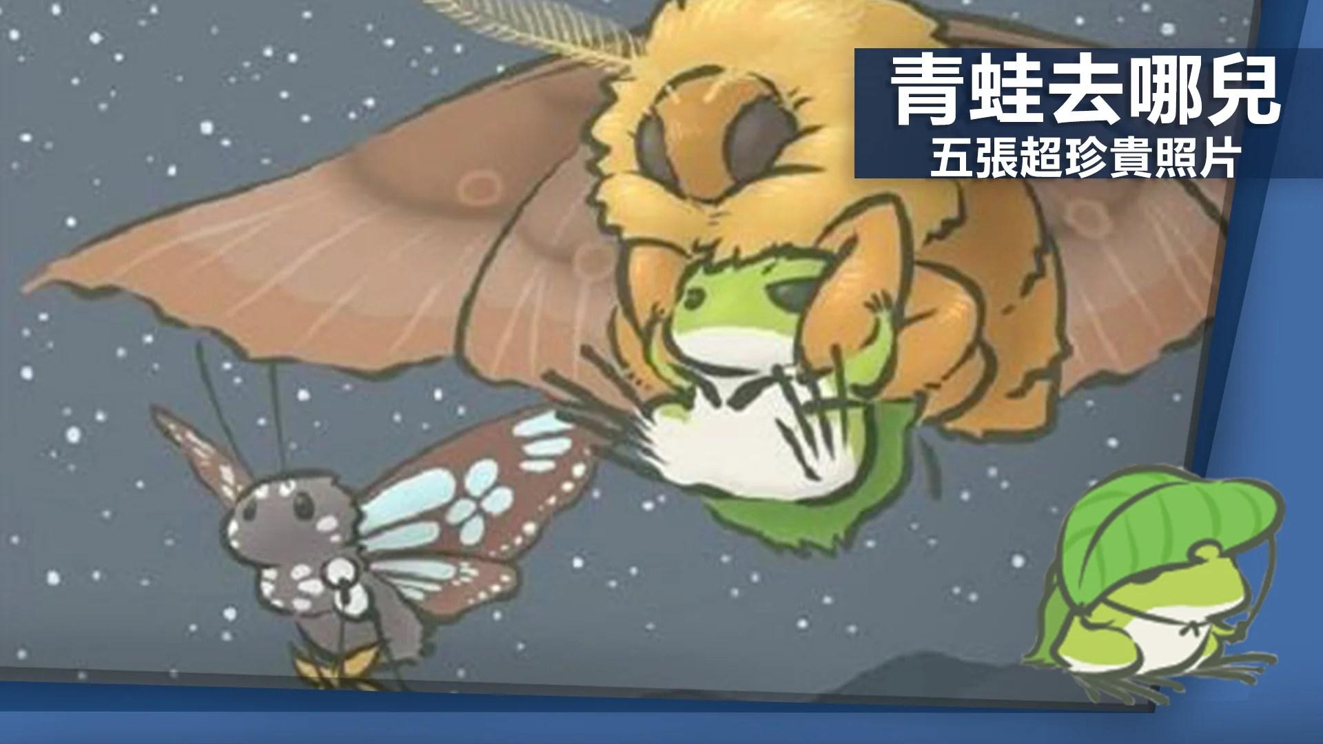 《旅行青蛙》還再玩嗎 最稀有明信片收集到了沒?-EXP.GG