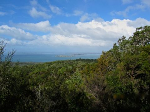 View from trail to Rangitoto summit