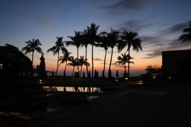 Miami Hotel Ocean View