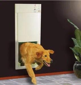 High Tech Wireless Electronic Pet Door