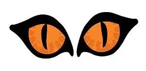 Lighted Orange Cat Eyes Halloween Window Silhouette