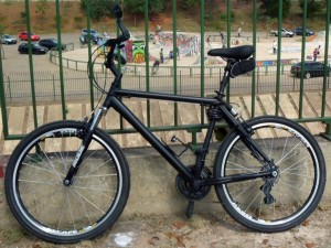 Canadian Mongoose, custom made mountain bike
