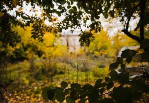 nature escapes around Bucharest