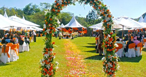 500 Pax Garden Wedding With Restaurant Amp Parasols Set Up