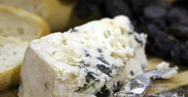 contaminated cheese
