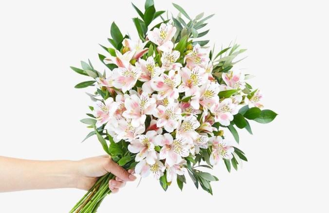 florist-hongkong-isa-artistic