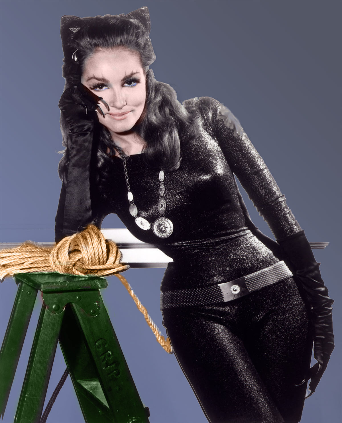 the old catwoman julie newmar