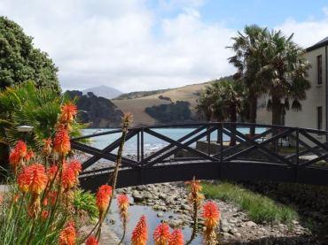Brücke in Akaroa