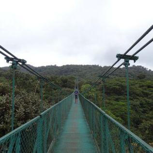 """""""hanging bridges"""" von Berg zu Berg"""