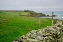 Mauer mit Moos in Cornwall