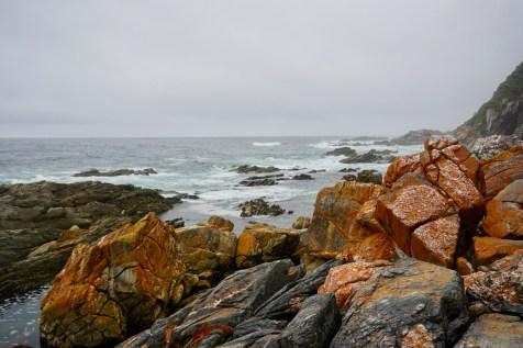 Felsen und Ozean im Garden Route National Park