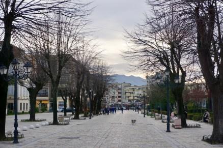 Allee in Albanien