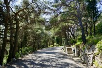 Stadtpark in Split