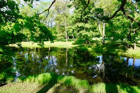 Begrünter Park in Lettland
