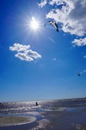 Kiter in Pärnu